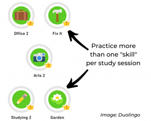 """Skills"" in Duolingo."