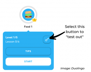 "The ""testing out"" feature in Duolingo."